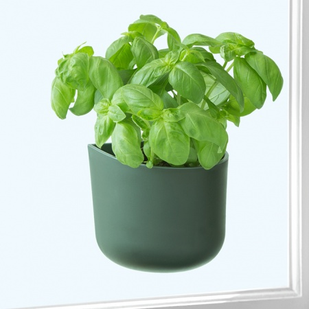 Eden Suction Herb/Plant Pot | Black